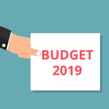 Conceptual writing showing Budget 2019. - ©azvector - stock.adobe.com